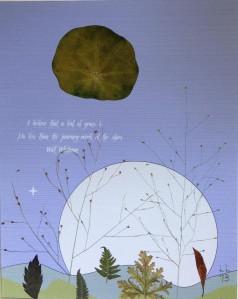 IMG_0994_crop